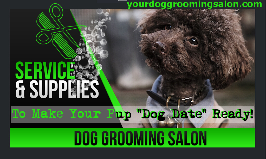 YouTube Thumbnail for Dog Grooming